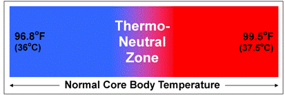 What_Causes_Core_Temp