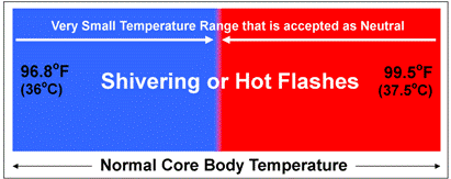What_Causes_Meno_Temp