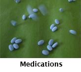 TN_Meno_Medications